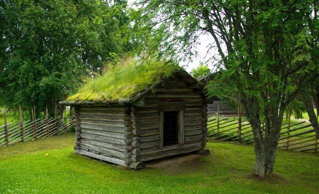 【画像付】人工芝の簡単DIYのやり方!手軽にお庭が一変!