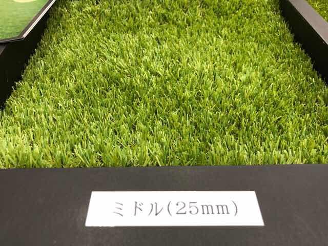 人工芝の芝丈