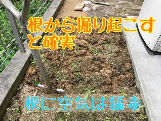 人工芝 DIY