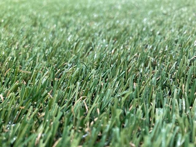 人工芝をアップ