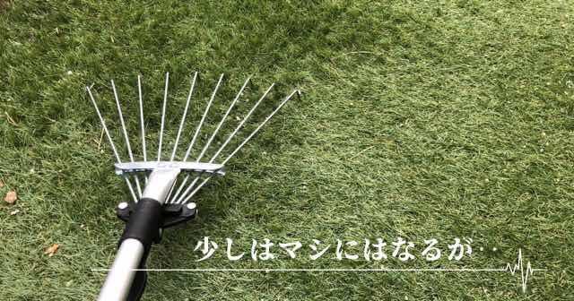 人工芝 メンテナンス